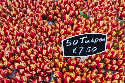 _IMG_8740_bloemenmarkt