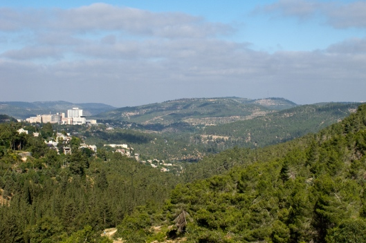 08_IMG_5544_Vue du Mont Herzl