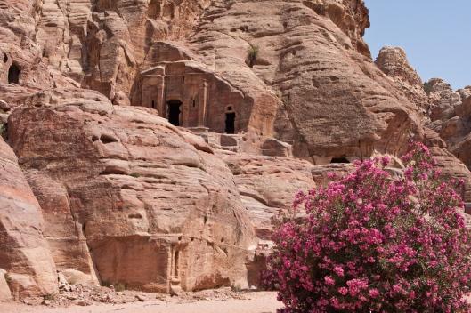 _IMG_6527_Petra_Wadi Farasa