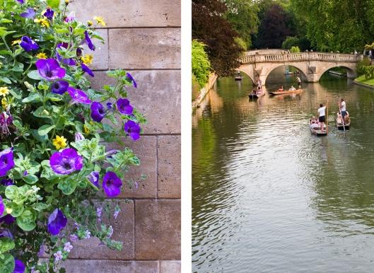 08_Cambridge