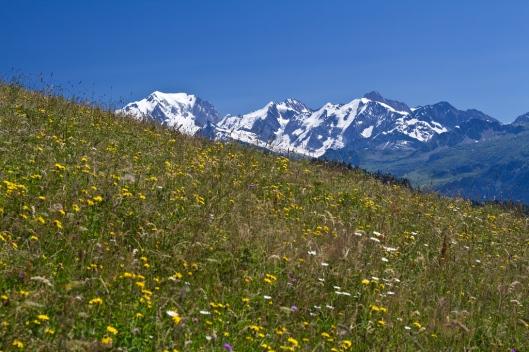 06_IMG_1044_Tour de Bisanne trail
