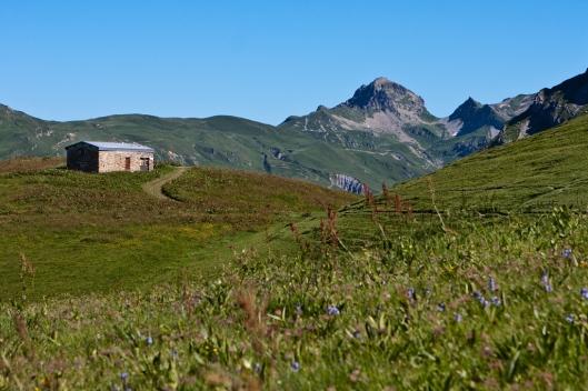 06_IMG_8001_Grande Berge Trail