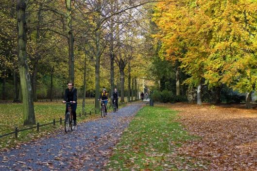 04_IMG_2595_Tiergarten