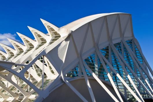 06_IMG_3481_Valencia_museo de las ciencas Principe Felipe