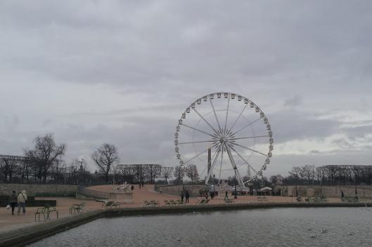 _20140109_141336_Jardin des Tuileries