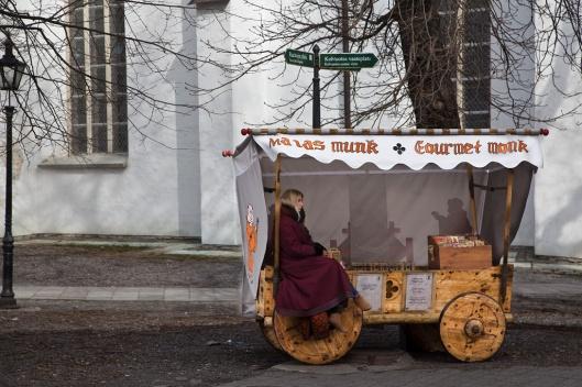 11_IMG_1606_Tallinn_Toompea