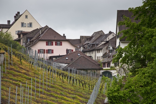 03_IMG_2107_Rapperswil
