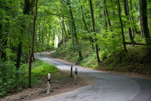 07_IMG_2366_Luxembourg_Mullerthal Trail