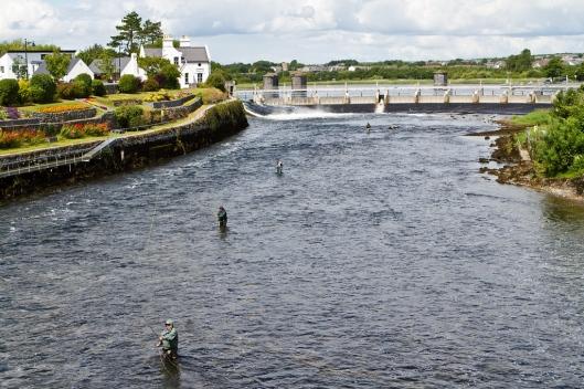 _IMG_6223_Galway_salmon weir_river corrib