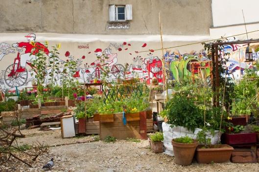 _IMG_8075_jardin de partage de la cite aubry