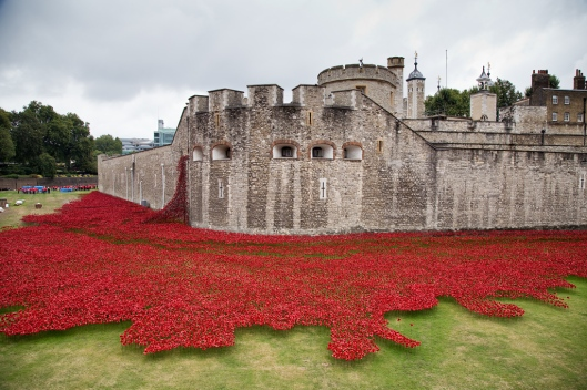 01_IMG_3689_London_Tower Hill_poppies