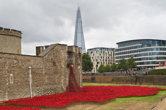 02_IMG_7186_London_Tower Hill_poppies