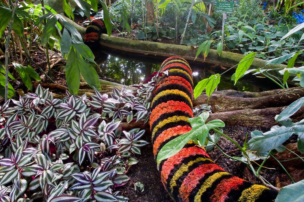 Les grandes serres the greenhouses les photos de suzanne pierre - Les serres de jardin ...