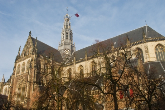 02_IMG_8658_Harleem_St Bavo Cathedral