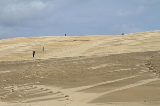 02_IMG_9593_Dune de Pilat