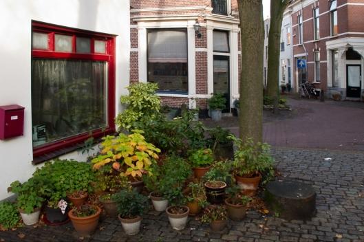 09_IMG_8672_Haarlem