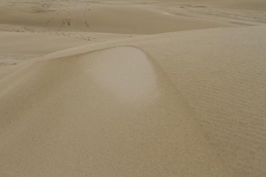 09_IMG_9558_Dune du Pilat