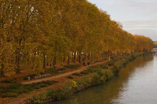 12_IMG_9435_Soissons_Aisne
