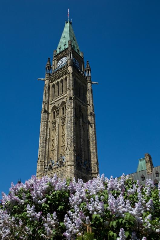 04_IMG_6595_Ottawa_Parliament Hill