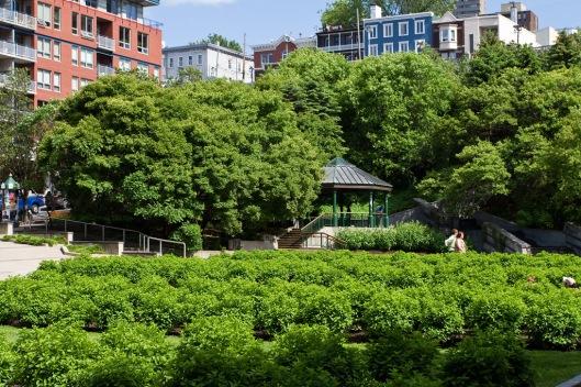 _IMG_0303_Quebec_Jardin St-Rock