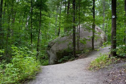 _IMG_0587_Algonquin Park_Lookout trail