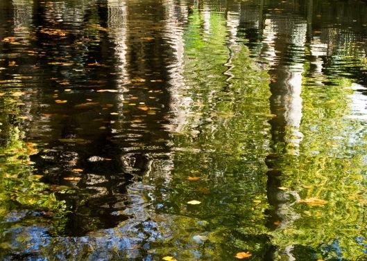 _IMG_0699_Paris_Jardin du Luxembourg