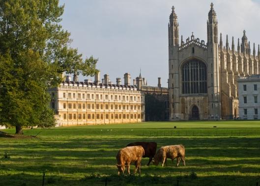 _IMG_0827_Cambridge_Kings College