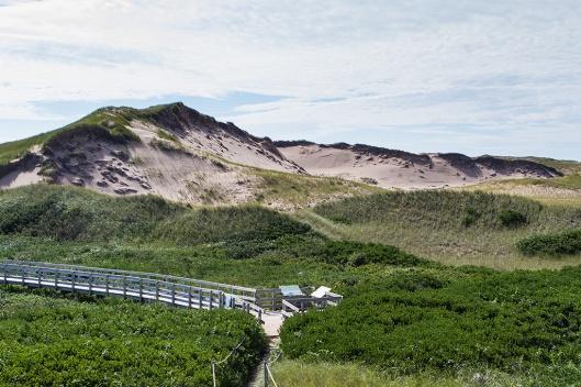 03_img_2601_greenwich-np_dunes