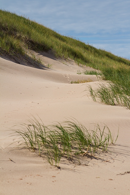 05_img_2599_greenwich-np_dunes