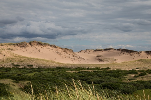 08_img_8728_greenwich-np_dunes