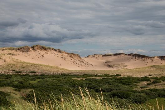 08_img_8728_greenwich-np_dunes