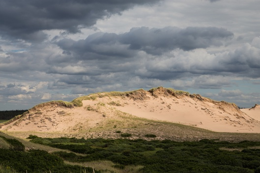 09_img_8720_greenwich-np_dunes