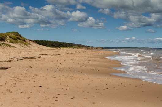 _img_2859_cavendish-beach