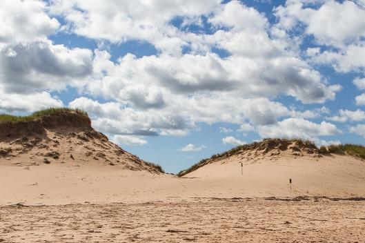 _img_2862_cavendish-beach