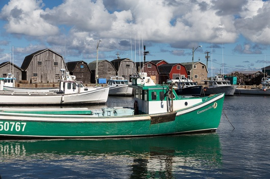 _img_8858_malpeque-harbour