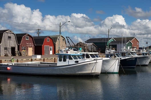 _img_8861_malpeque-harbour