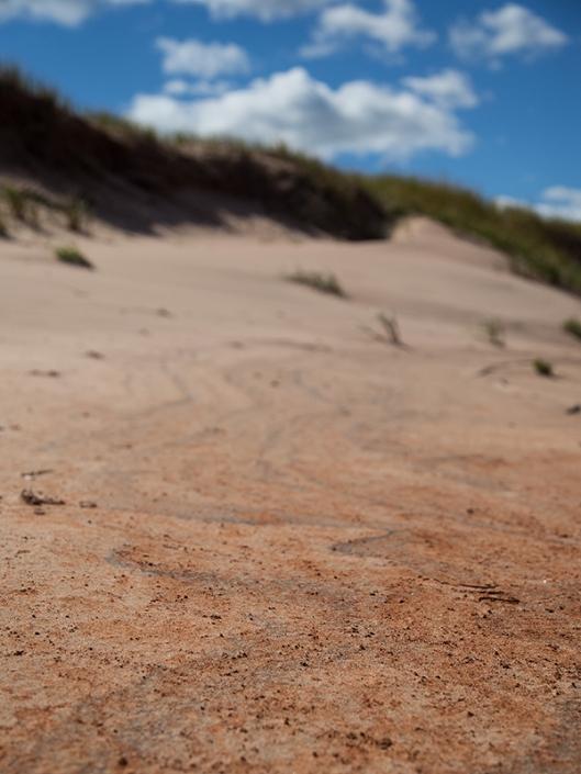 _img_8947_cavendish-beach