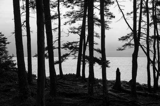 _img_9057_acadia_wonder-land-trail