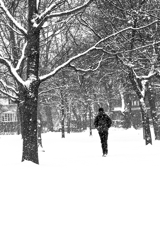_img_1775_parc-outremont