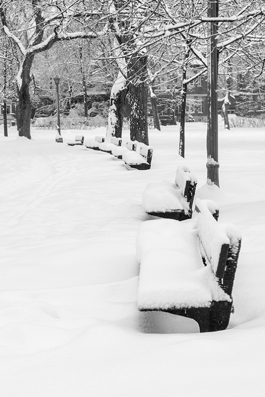 _img_1800_parc-outremont